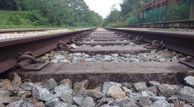 Bukit Timah Railway Tracks 3