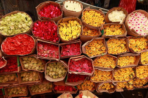 Ky Hoa Night Market, Ho Chi Minh